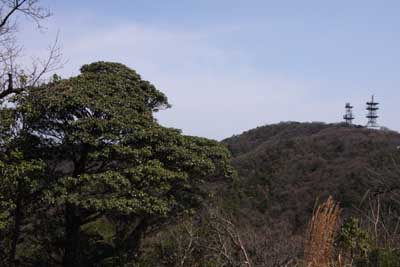 Kurobai