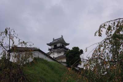 Kakegawajo1