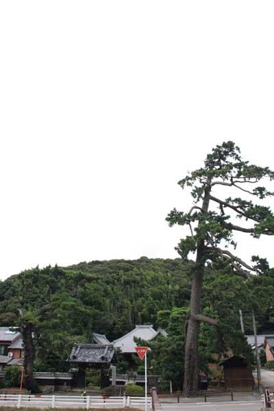 Enyuji1