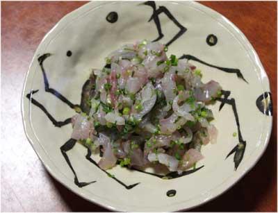 Itohikiaji3