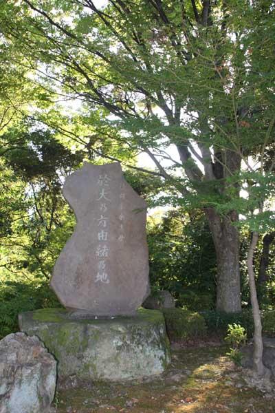 Shiinoki