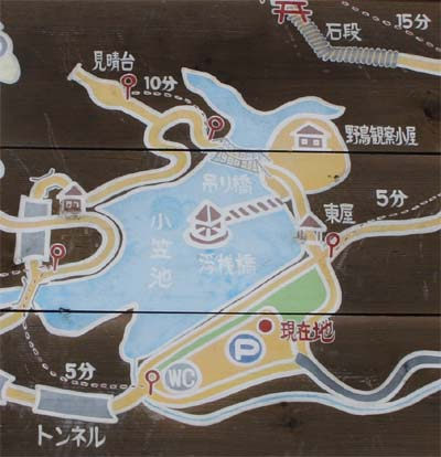 Ogasayama1