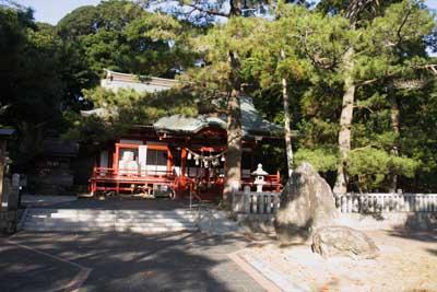 Sakuragaike2