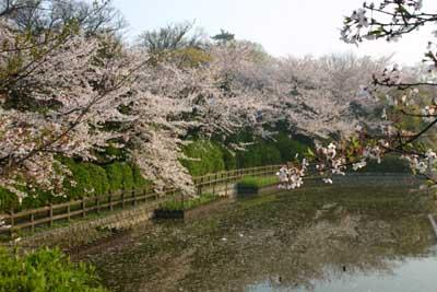 Kijoukouen