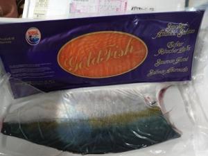 Fish1_20210103171401
