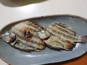 Kagokakidai2