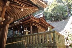 Kumaku2